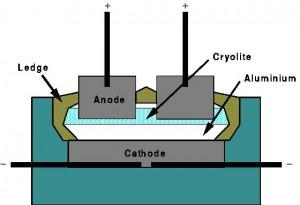 schema cell